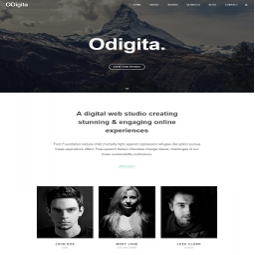 Odigita Digital Web